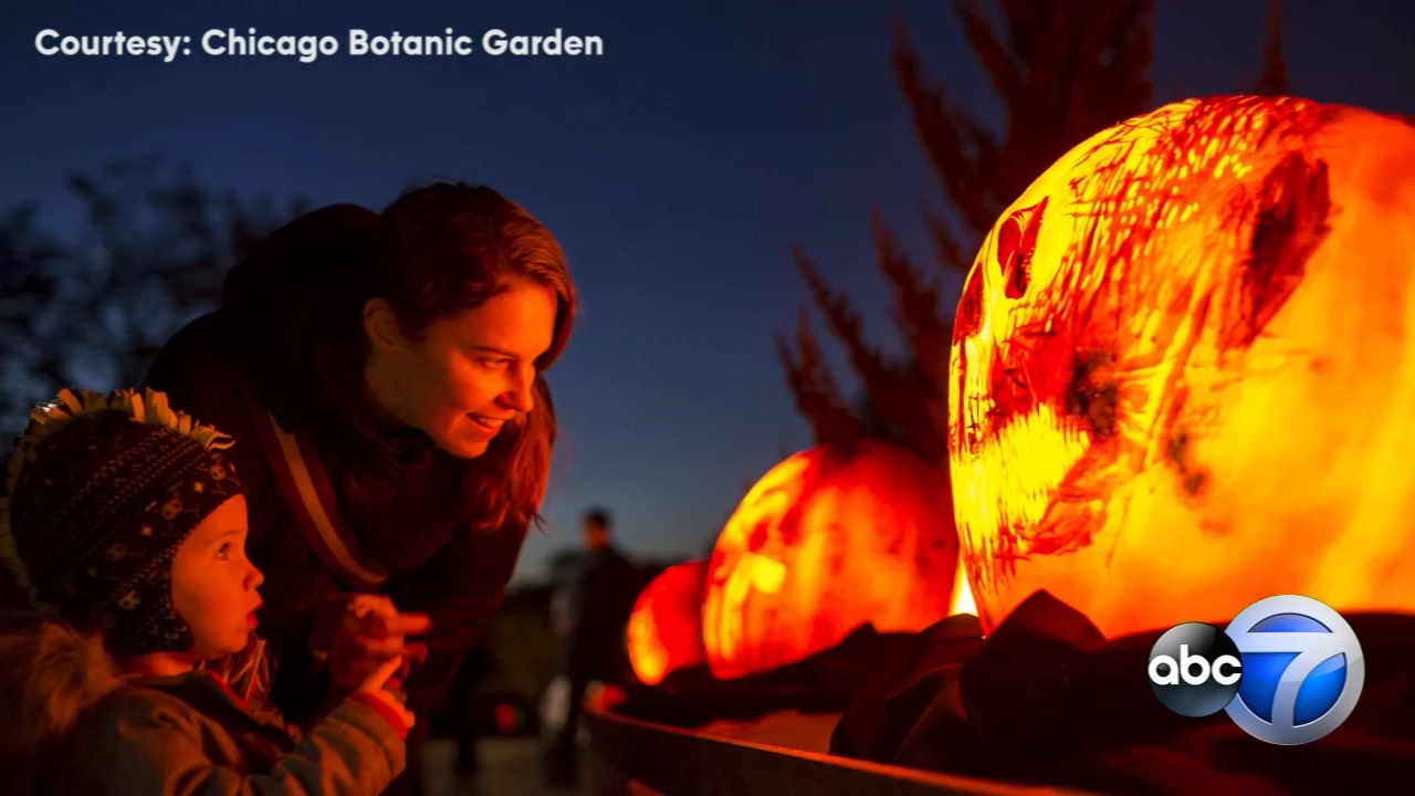 Artists spent up to 15 hours carving each of the jack-o-lanterns on display for the annual  Night of 1,000 Jack-o-Lanterns.