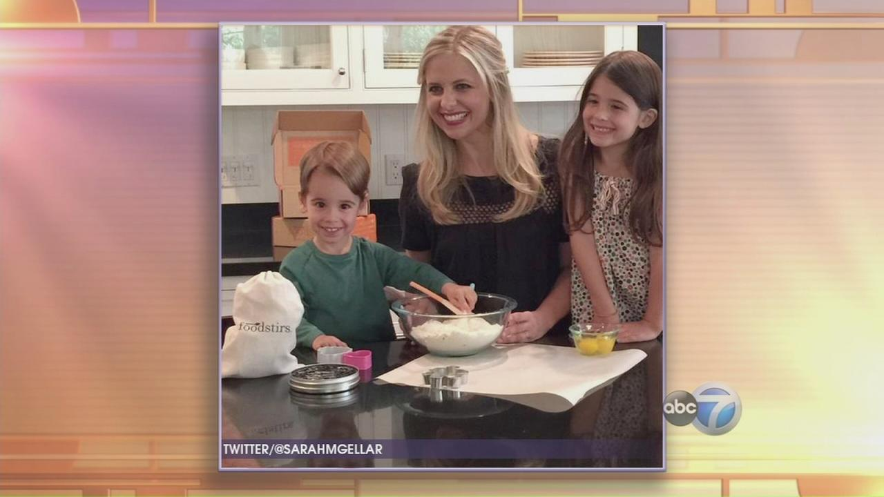 Sarah Michelle Gellar launches Foodstirs