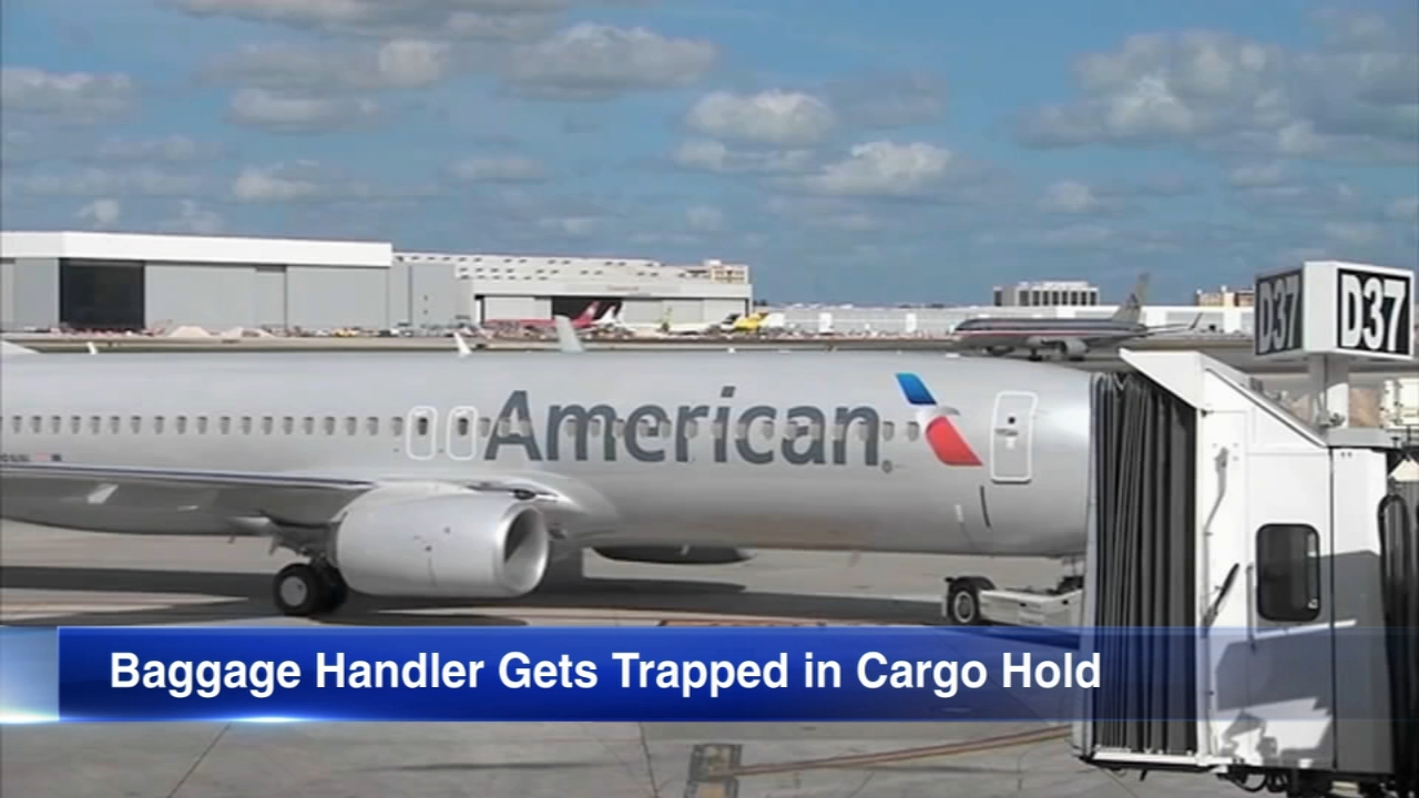 There was a surprise discovery on an American Airlines plane that landed at OHare last weekend.
