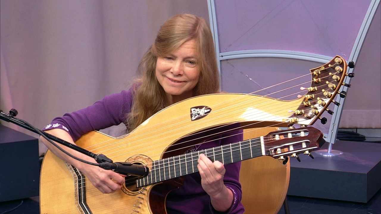 World renowned harp-guitar player Muriel Anderson is returning to her hometown of Downers Grove for a special after-Thanksgiving concert.