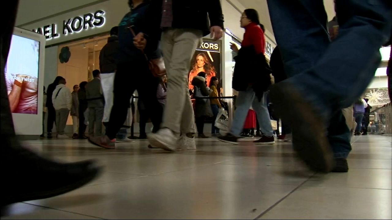 From the Magnificent Mile to suburban malls, shoppers were out in force for Black Friday.