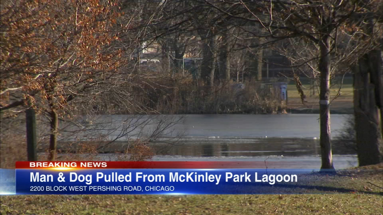A man who jumped into the McKinley Park Lagoon trying to rescue a dog died Saturday afternoon.
