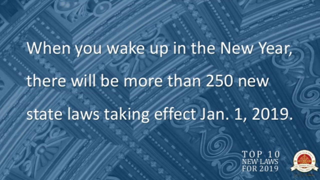 With the start of the New Year always comes a new set of laws to obey. Read a complete list here, and see the top new Illinois laws for 2019.
