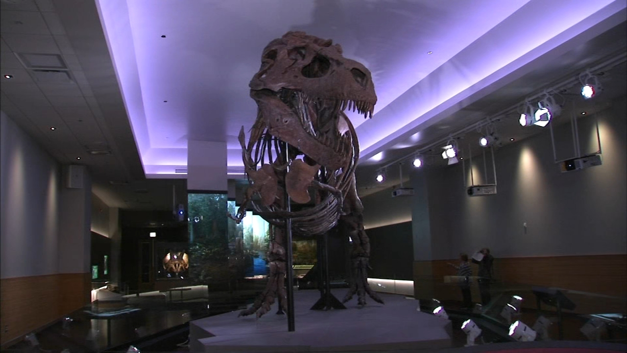The Field Museum unveiled the new 5,100-square-foot facility on the second floor on Tuesday.