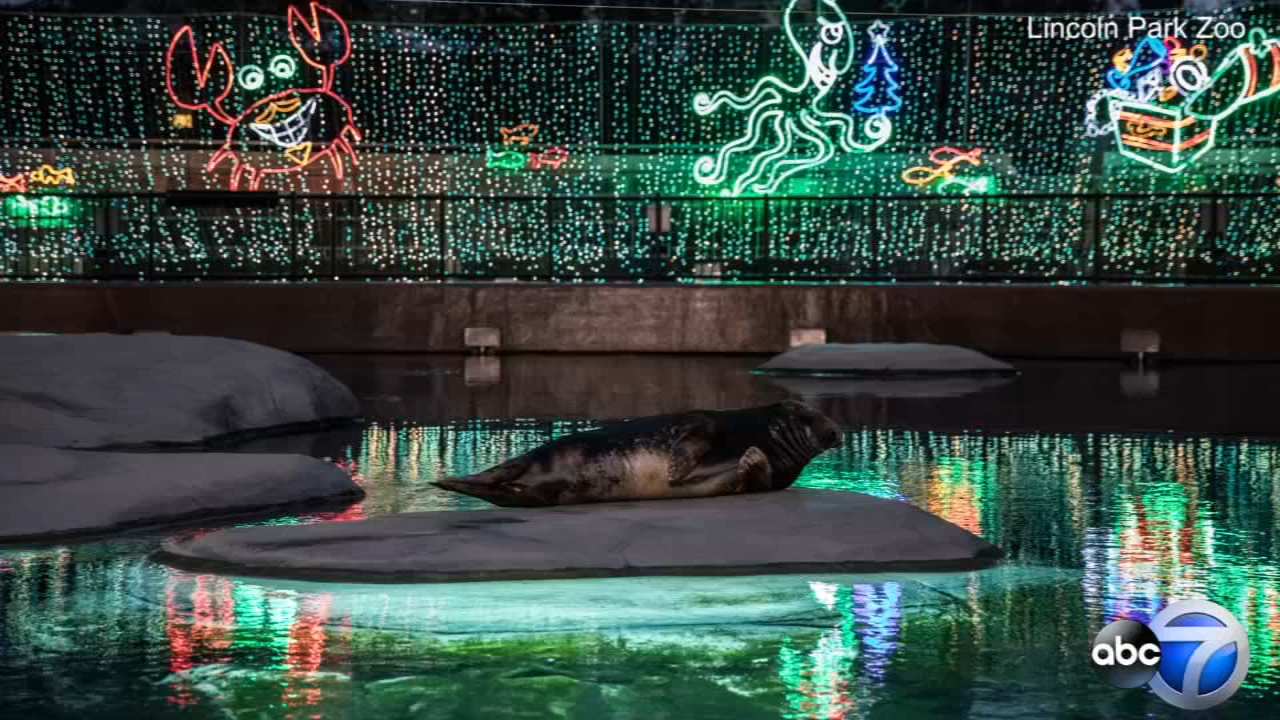 ZooLights is back at the Lincoln Park Zoo through January 6.