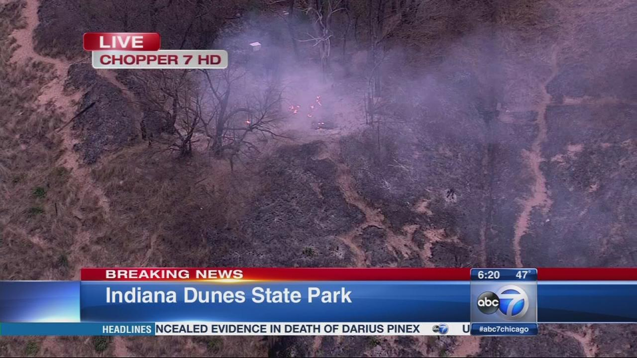 Indiana Dunes brush fire under control