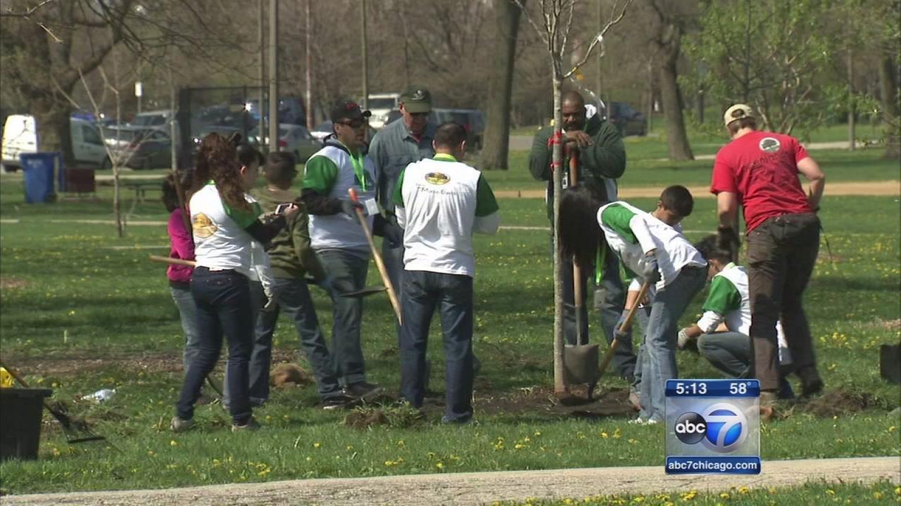 Groups clean up public spaces
