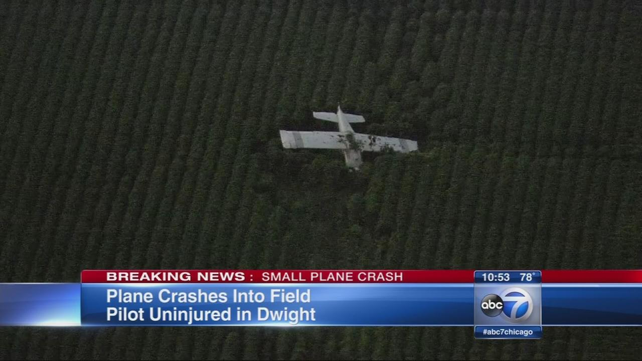 Small plane crashes near Dwight airport