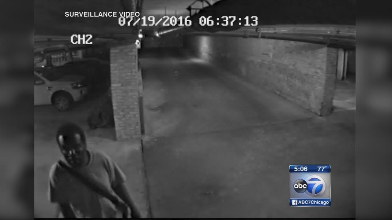 Does video show Bucktown Creeper?