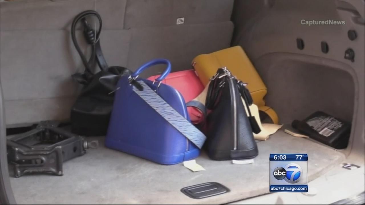 2 in custody in handbag heist