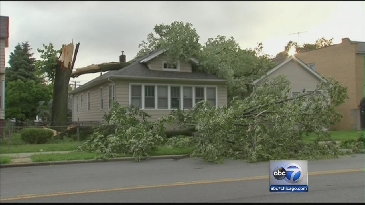 Fallen trees damage property in south suburbs