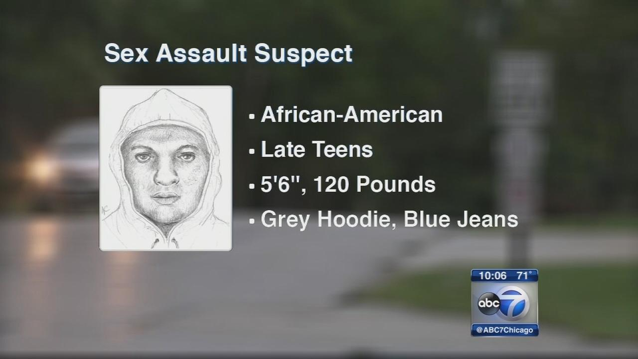 Police release sketch of suspect in Palos Hills sex assault