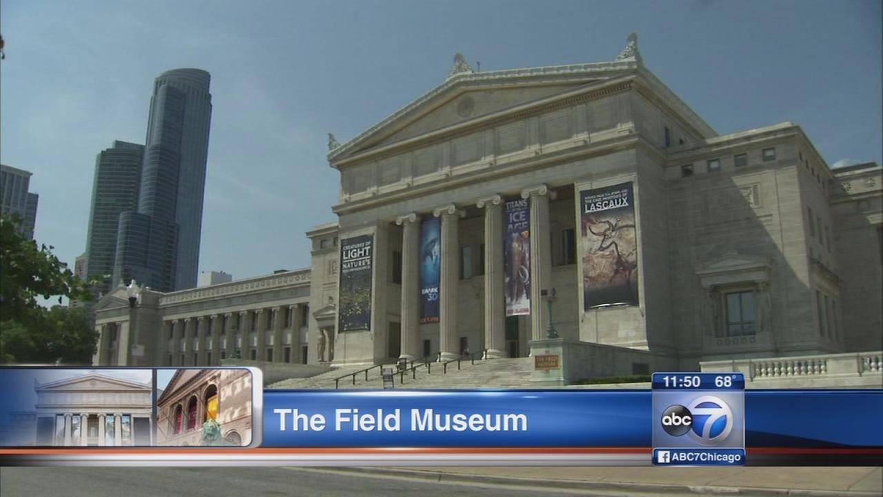 Chicago Museum Week