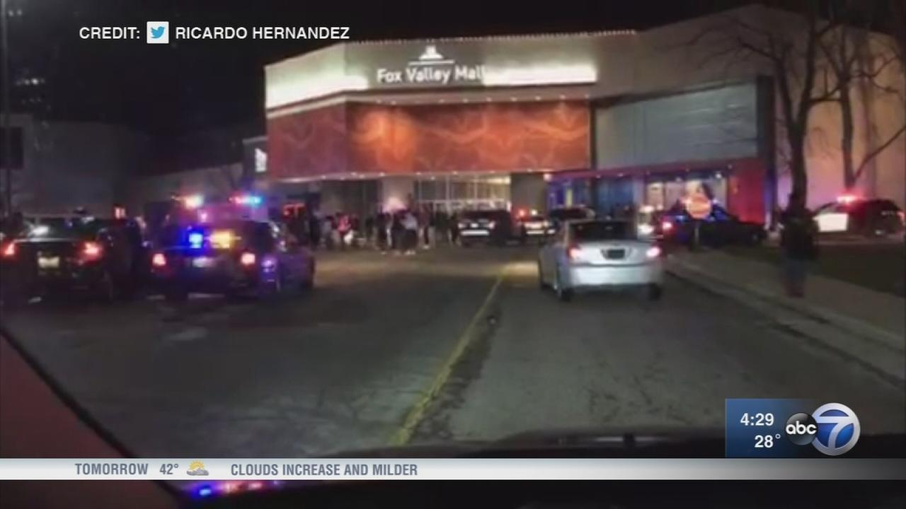 8 juveniles charged in Fox Valley Mall brawl