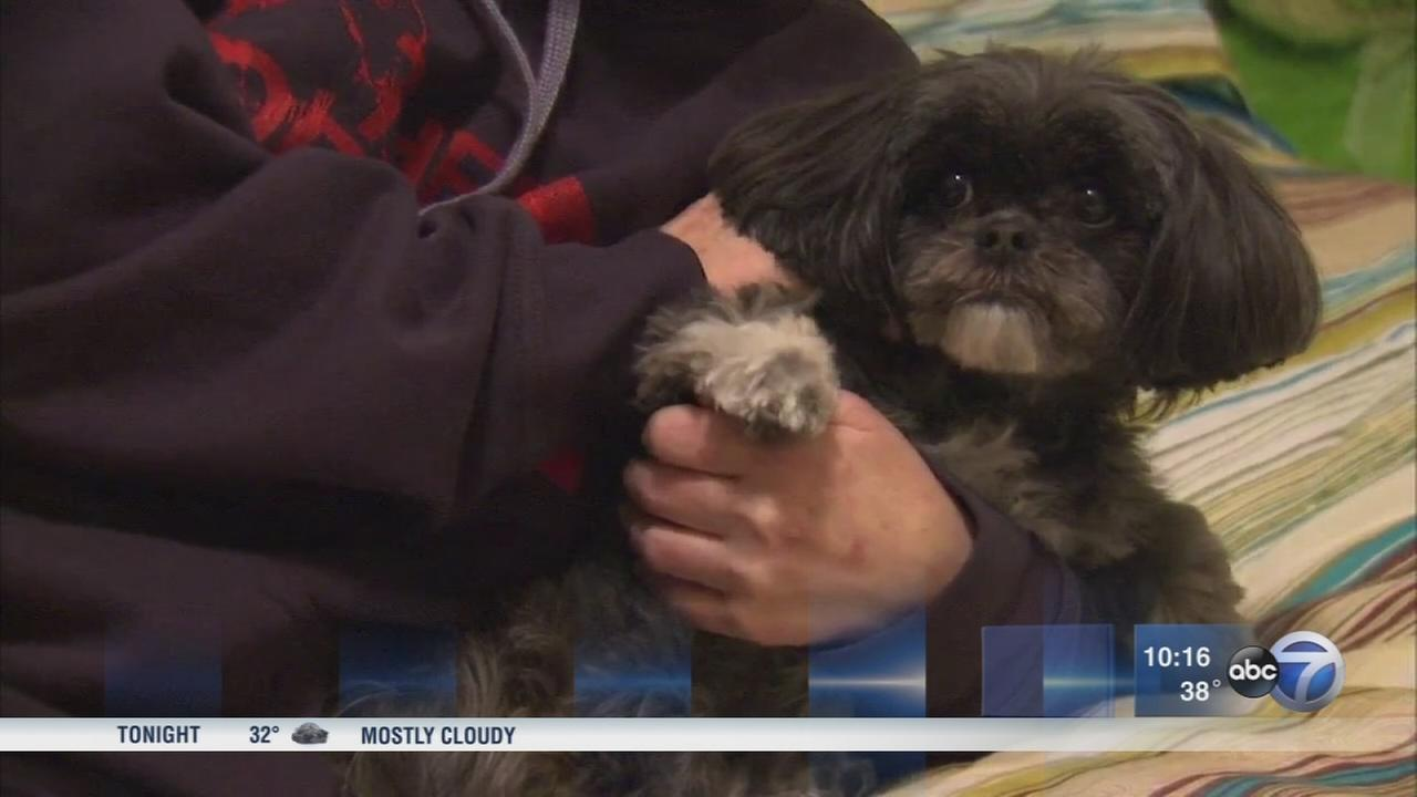 Family credits dog with saving daughters life