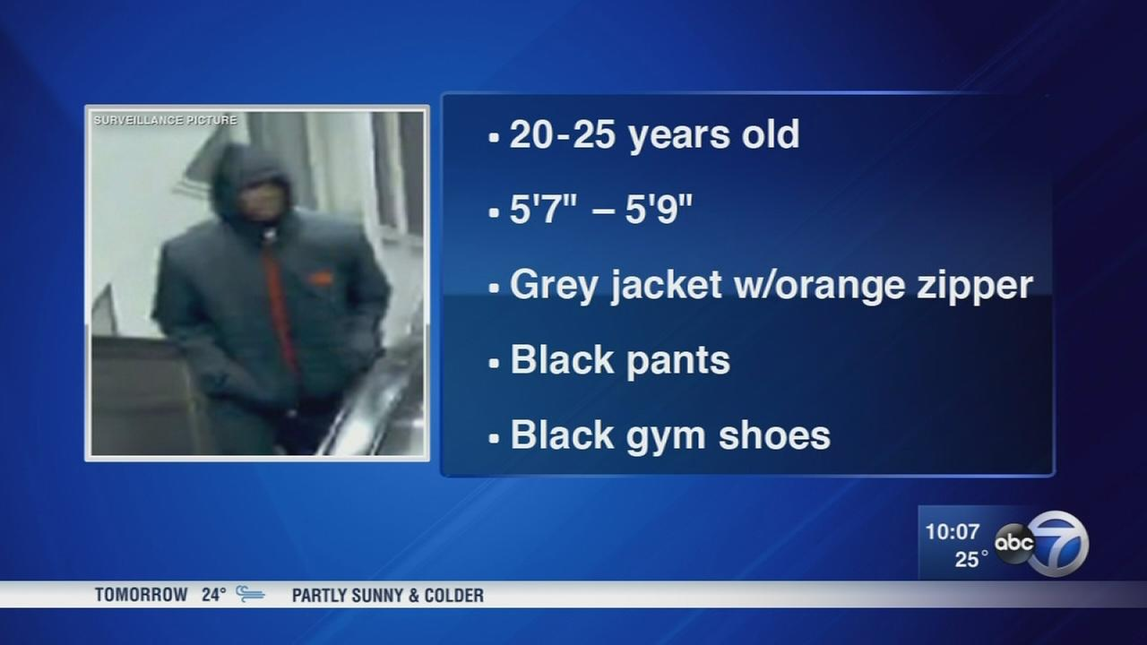 Police: Woman attacked after getting off CTA bus in Grand Crossing