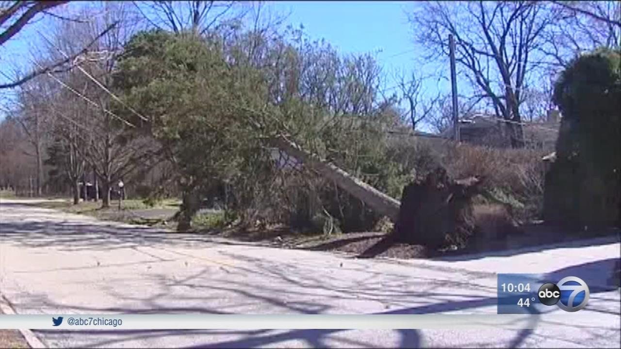 High winds cause damage in city and suburbs