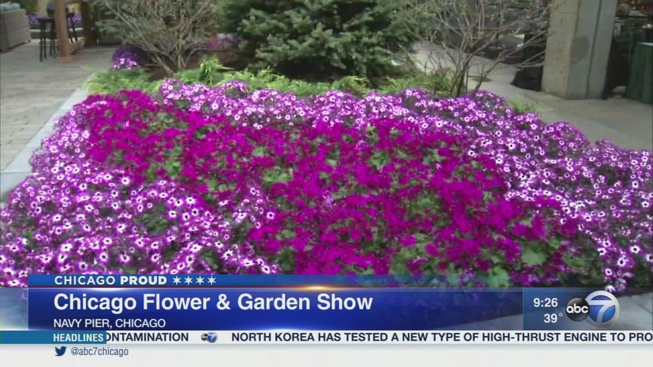Spring comes early at the Chicago Flower and Garden Show