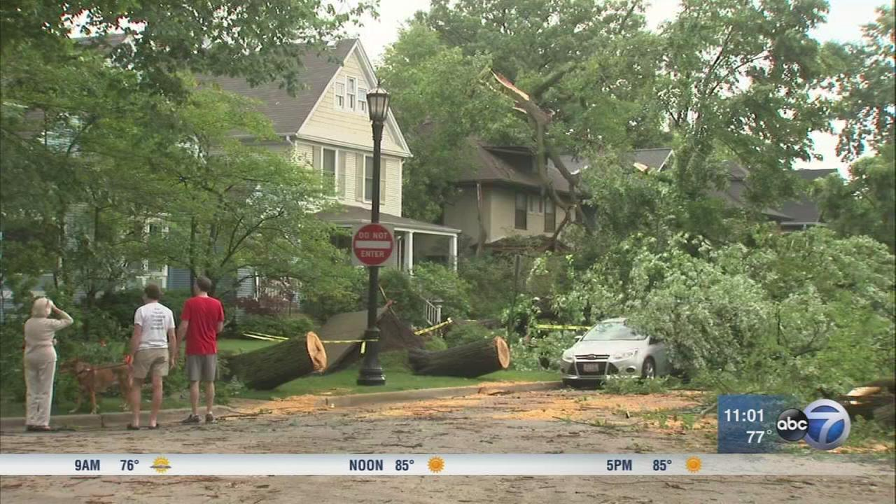 Chicago Weather: Severe storms down trees, flood streets