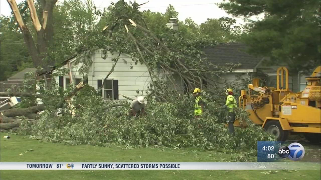 Trees topple onto homes, roads in Antioch