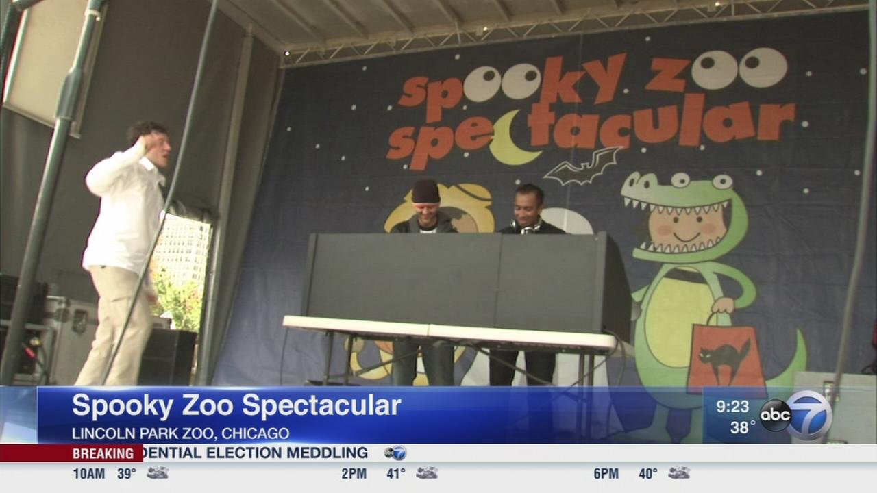 Halloween fun at the Lincoln Park Zoo