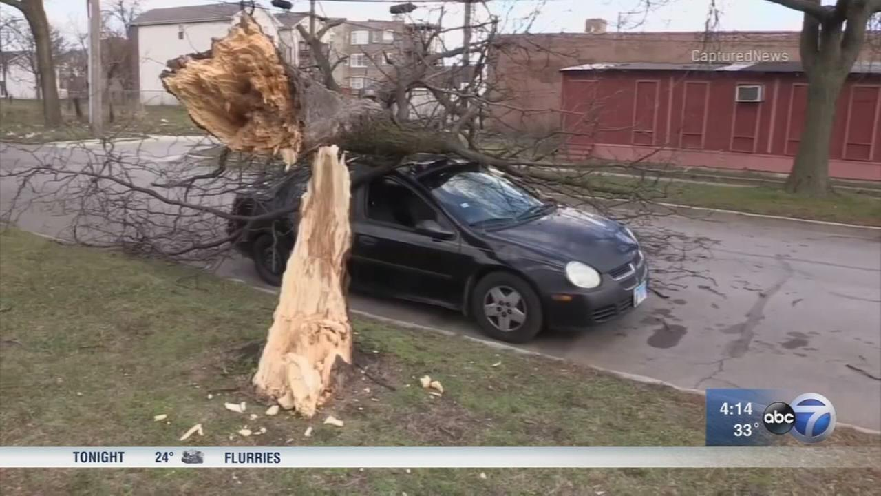 Gusty winds send debris flying across Chicago area