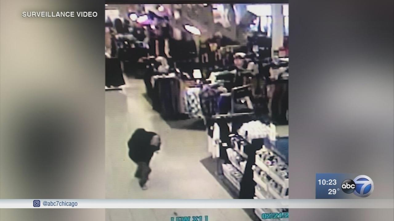 Puppy stolen from Fox Valley mall, suspect caught on camera
