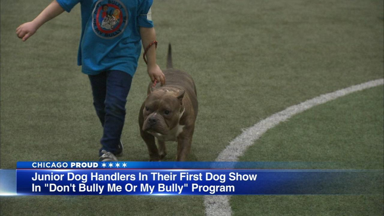 Kids and bully breeds come together for first dog show