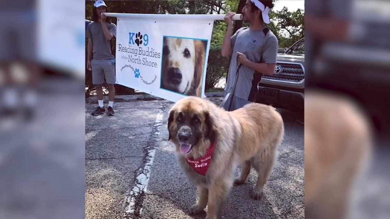 Bring your pups to Highland Park to strut their stuff