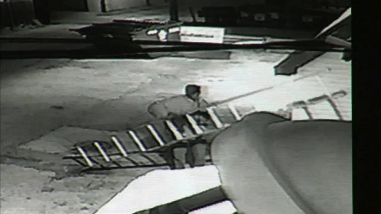 Burglars caught on camera stealing copper wire from Capt.'s Hard Times