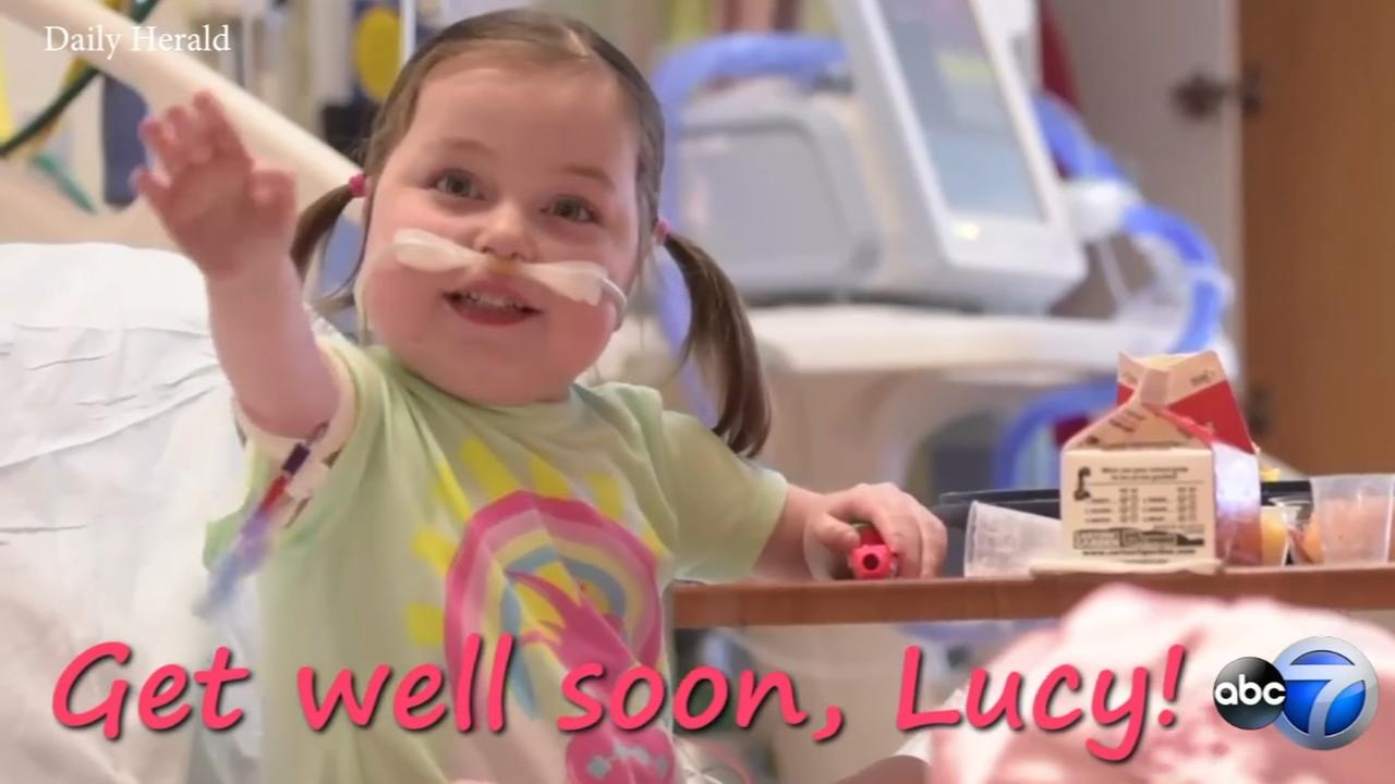 4-year-old Lombard girl recovering from heart transplant