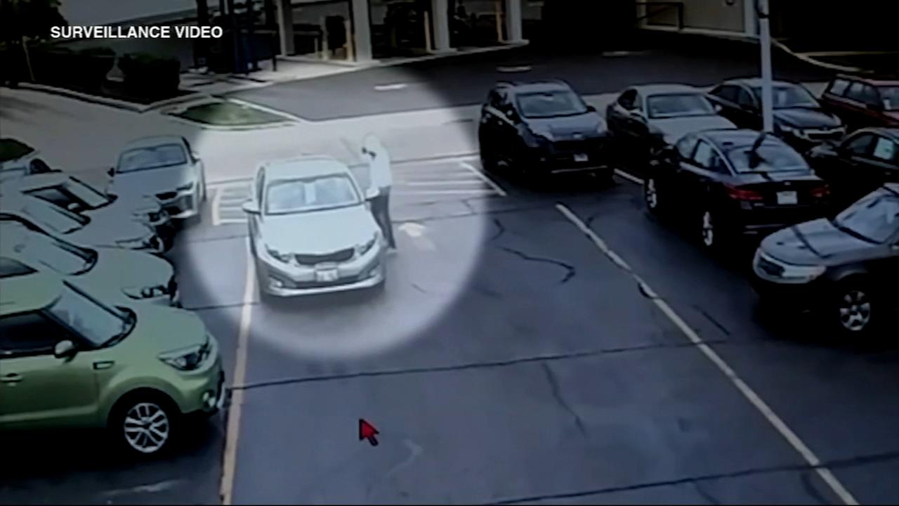 Car stolen from dealership found torched