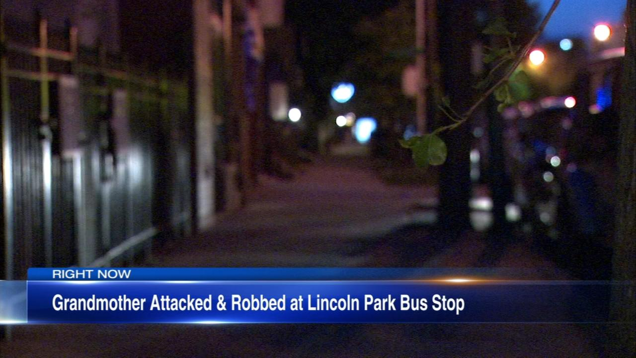 Grandmother pistol-whipped at Lincoln Park bus stop