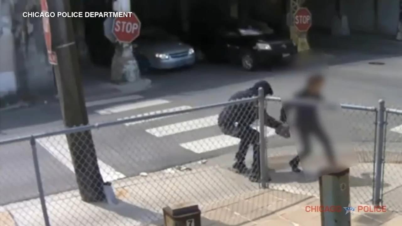 Robber snatches womans purse, knocks her to ground in Bridgeport