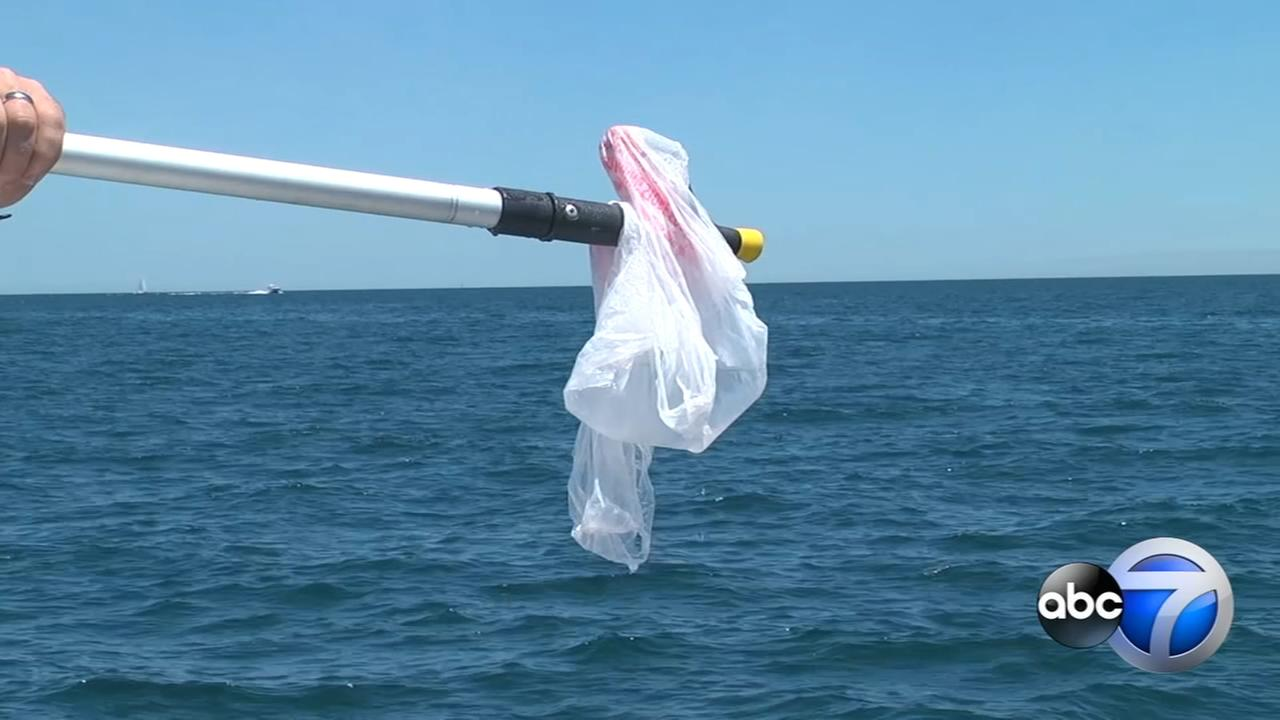 Boaters encouraged to pick up debris