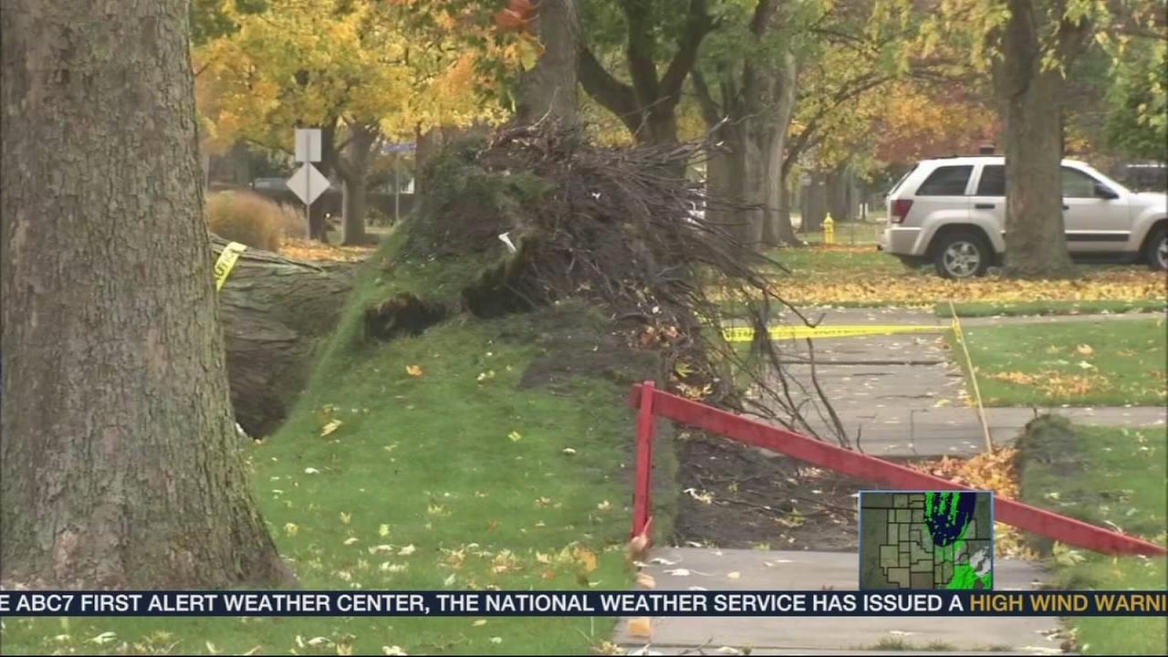 Power outages, storm damage in NW Indiana