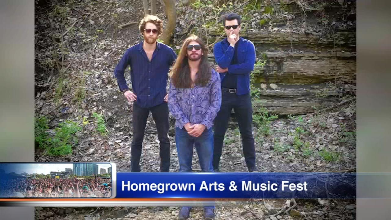 Daily Herald: Arts and Music Festival