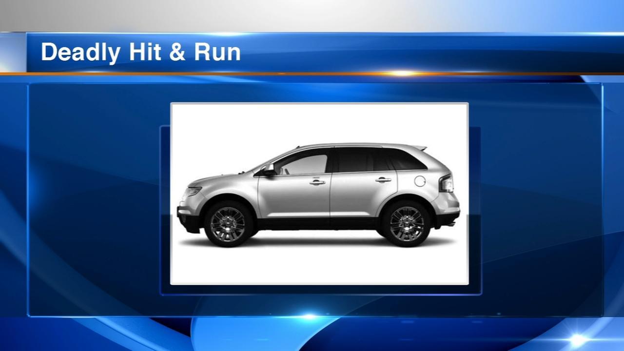 Man killed in Belmont Cragin hit and run
