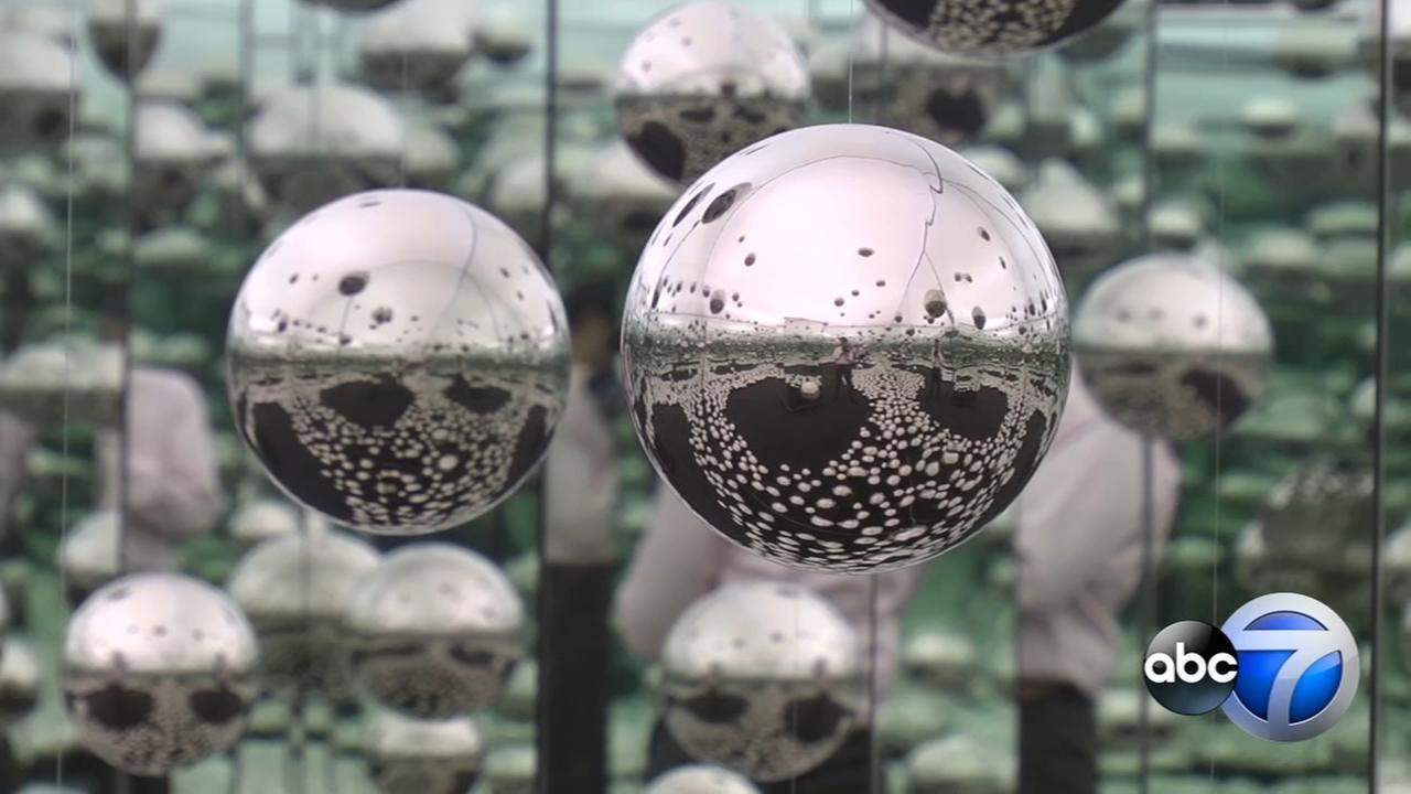 West Loop pop-up museum fuses art and science