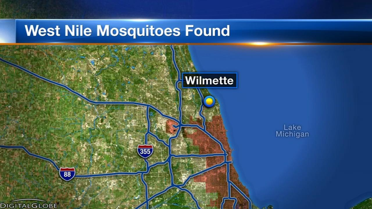 West Nile virus detected in North Shore mosquitoes