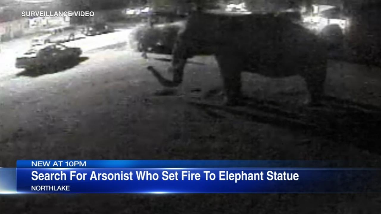 VIDEO: Arsonist sets fire to life-sized elephant statue in Northlake