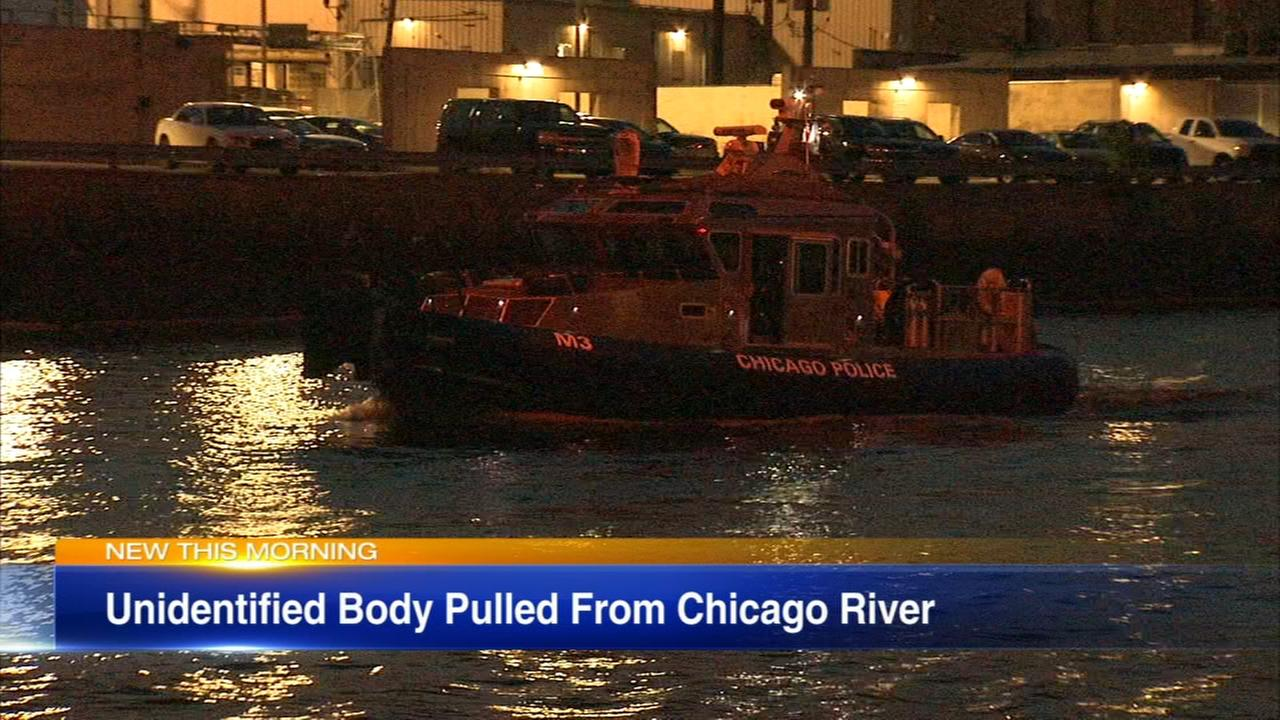 Body pulled from Chicago River