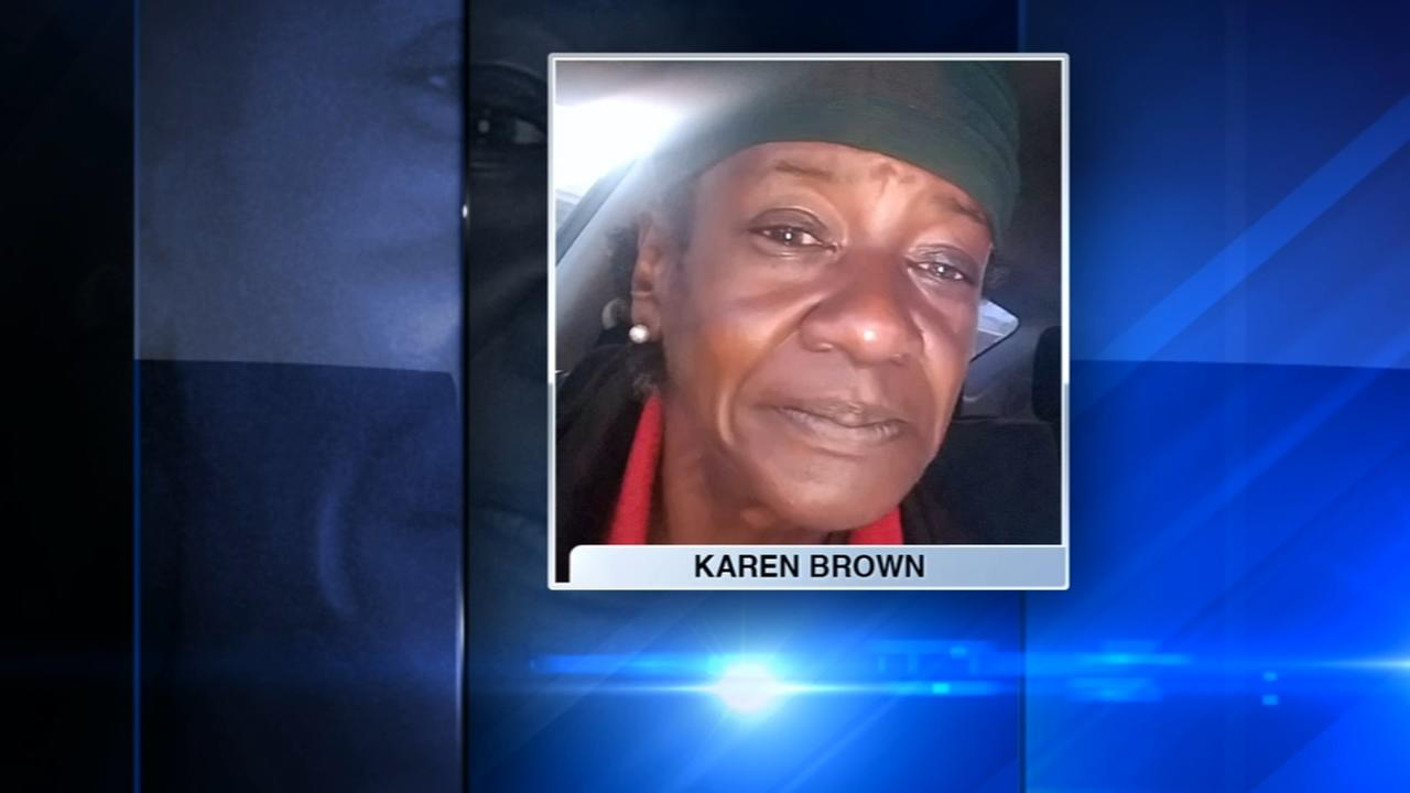 Chicago police fatally shoot pit bull that killed woman