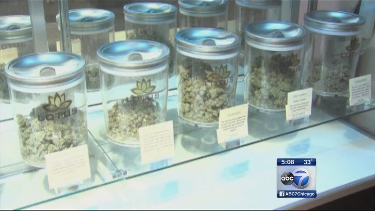 Patients lose patience for medical marijuana delays