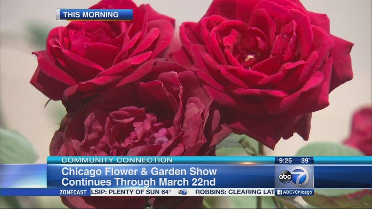 Chicago Flower and Garden Show