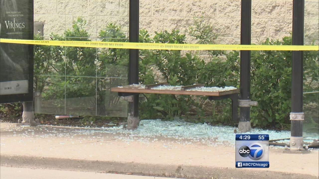 Man shot at Roseland bus stop