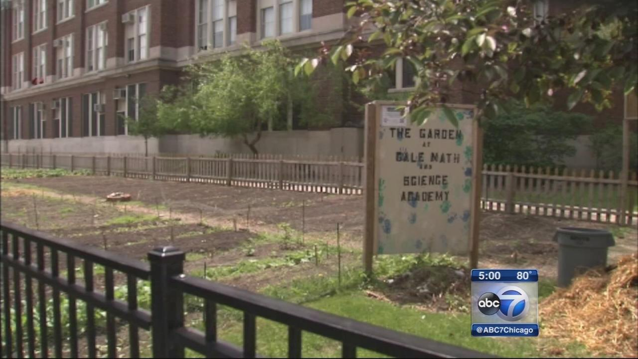 Rogers Park school cancels recess after nearby shooting