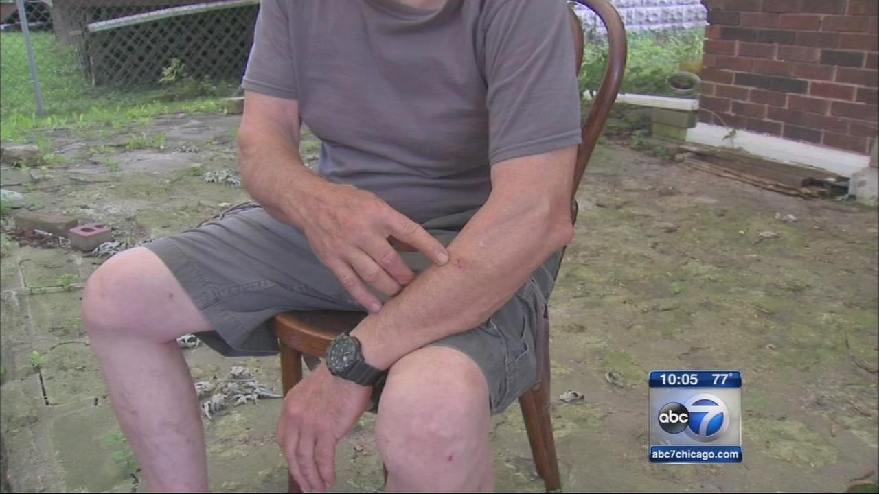 Joliet police investigate paintball attack