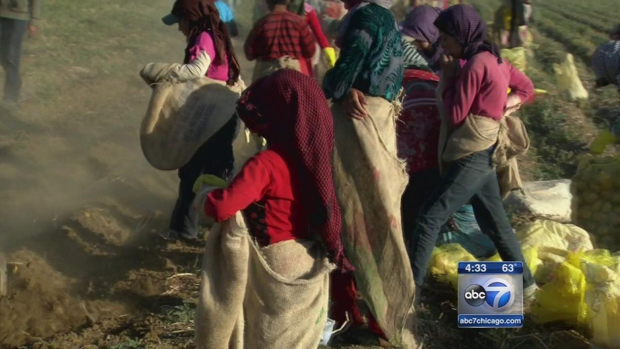 Refugees arrive in Chicago
