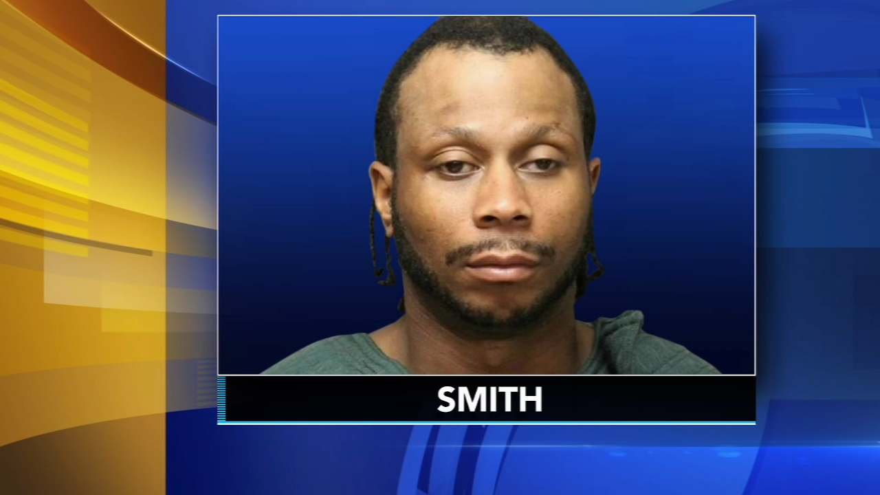 NJ man pleads guilty to murdering girlfriend with hammer. Jim Gardner reports during Action News at 11 p.m. on January 4, 2019.